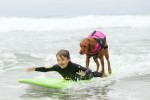 surfing-dog-service-disabled-people-surf-board-ricochet-3