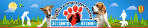 logo-big-1050